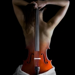 Reinvention of the Cello