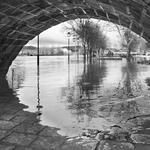 O dia em que o rio veio á cidade