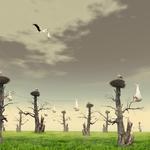 Stork call center