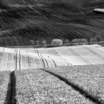 Moravia in IR