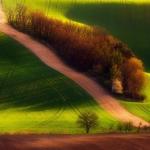 Moravian Field