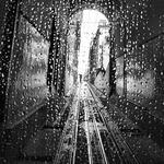 Lisbon raindrops