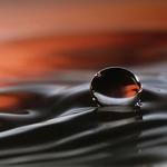 Water Float