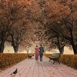 Walk on a sweet November II