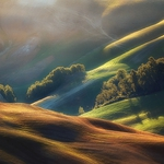 In The Light Of Tuscany