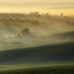 Moravian mists