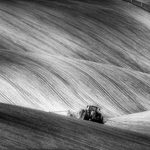 Moravian seeding