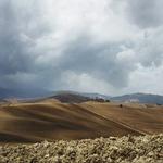 Tuscan earth ..