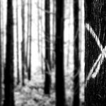 X - Marcada para morrer