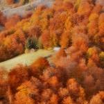 autumn just___