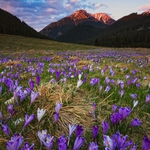 Spring in Tatra Mountains