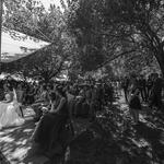 #wedding #mariage #casamentos 90801