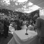 #wedding #mariage #casamentos 91205