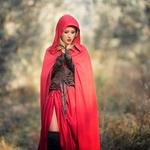 Le petit chaperon rouge,2