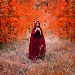 Red riding hood,4