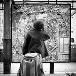Great Traveler