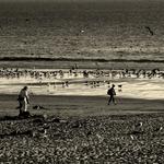 Praia movimentada