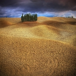 My tuscan landscapes..