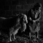 Ruralidade