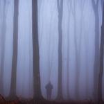 Wandering (2)