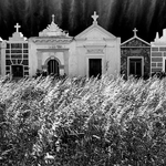 Corsica cemetery