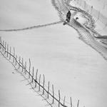 Winter Diagonals