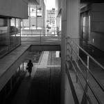 Nos corredores da burocracia.