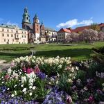 Wawel Palace