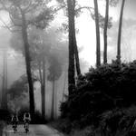 By Sintra ways