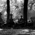 Autumn cemetery mood