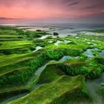 Green land 2