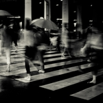 Crosswalk of rain