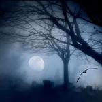 the moon inside me