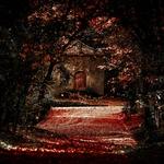 Sangue derramado_