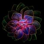 Electric fractals
