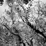 Distorting droplets