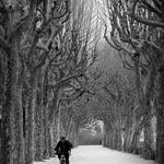 Cidade de inverno