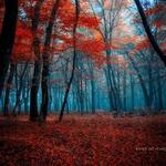 kind of autumn