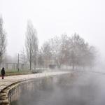 Neblinas matinas