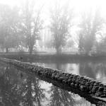As primeiras neblinas