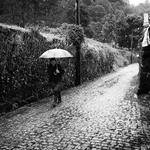 Passear à chuva