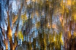 Cascata de luz