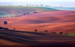 dreamy landscape IV