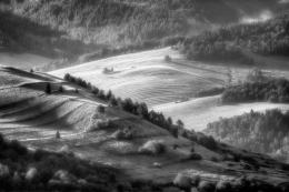 dreamy landscape V