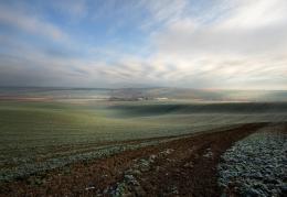field's landscape