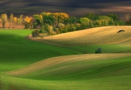 Autumn on fields___
