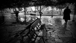 Wet&Dark