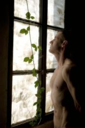 dans la fenêtre