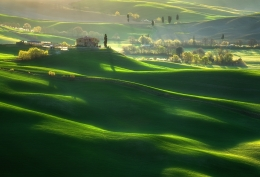 Green waves___
