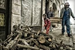firewood ( legna )